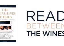 Web Read Between The Wines Final